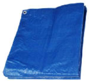Where to find TARP - 15  X 20 in New York City Metro Area